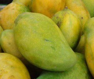 mangoes singapore